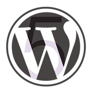 WordPress WP No Category Base bővítmény