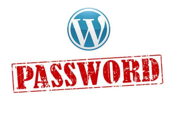 Biztonságos admin jelszó WordPress oldalhoz